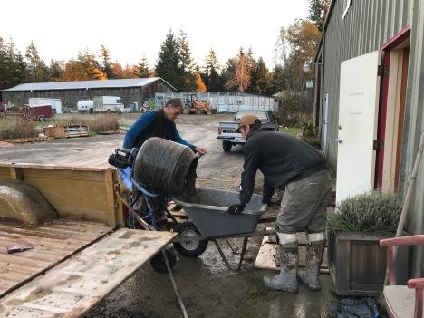 Hal pours concrete from mixer while Shane Patrick runs the wheelbarrow.