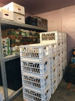 Crates & boxes of apples and kiwis