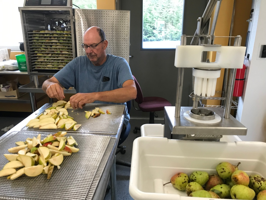 Jim Birkemeier prepping pears for dehydration using brand-new corer/wedger equipment.